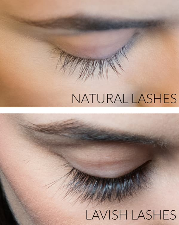 Eyelash Extension Training Classes By Lavish Lashes